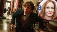 Here's How J.K. Rowling's Transphobic Comments Could Effect The 'Fantastic Beasts' Franchise