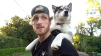 Logan Paul Denies Accusations That He Pushed His Dog Into A Lake
