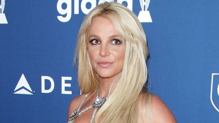 Britney Spears' Dad Speaks Out About 'Free Britney' Concerns, Calls It A 'Conspiracy Theory'