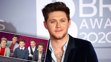 Niall Horan Responds After One Direction's Wax Figures Removed From Madame Tussauds