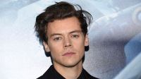 Harry Styles Spotted on 'Don't Worry Darling' Set: What We Know About the Movie