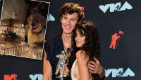 Shawn Mendes and Camila Cabello Are Dog Parents: All the Cutest Photos of Tarzan