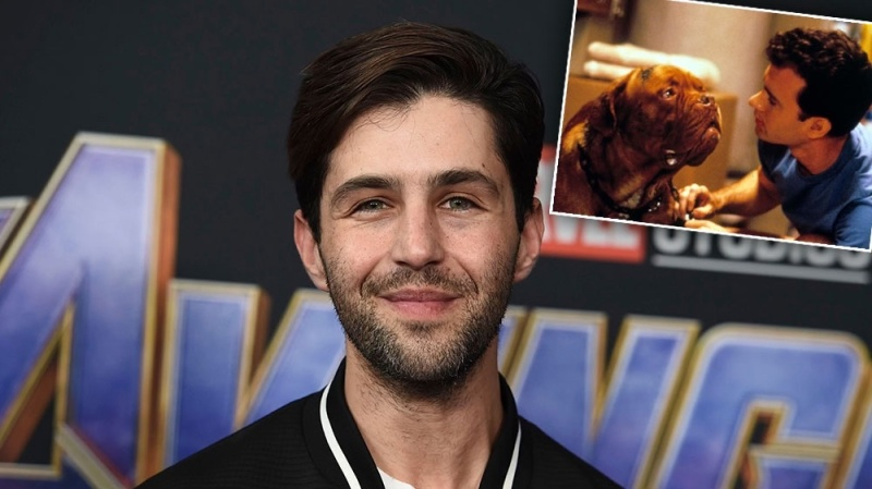 Josh Peck Will Make His TV Return in 2021: What to Know About 'Turner & Hooch'