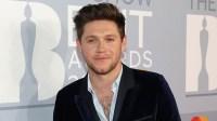 Niall Horan Teases 3rd Studio Album: What We Know So Far