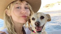 Dogs! Cats! Pigs! A Guide to All of Miley Cyrus' Pets