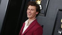 Is Shawn Mendes Gearing Up to Release New Music? What We Know About His Possible 5th Album