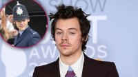 Harry Styles Is Spotted in Costume for the 1st Time on the 'My Policeman' Set — See Photos