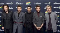 The Former One Direction Member's Most Candid Quotes About Their Time in the Boyband