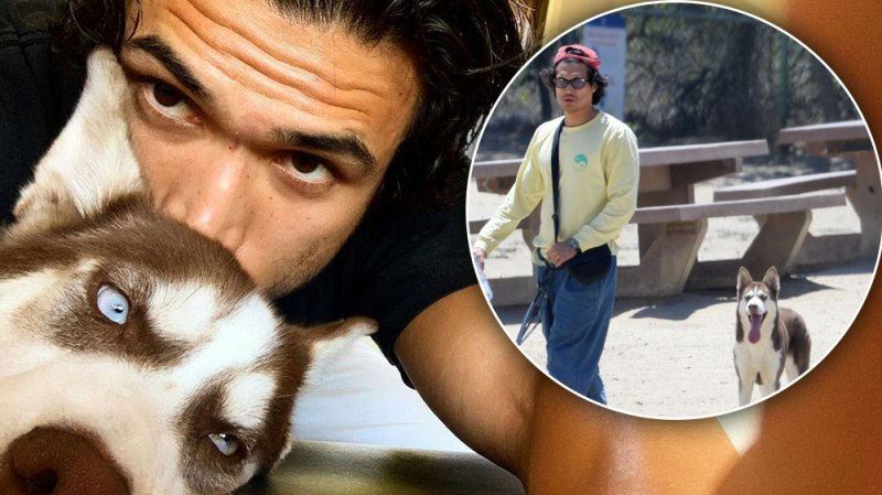 Charles Melton Steps Out With Pup Neya After Camila Mendes Reconciliation Speculation: Photos