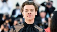 Singer or Makeup Mogul? All the Signs Harry Styles May Have a Beauty Brand in the Works