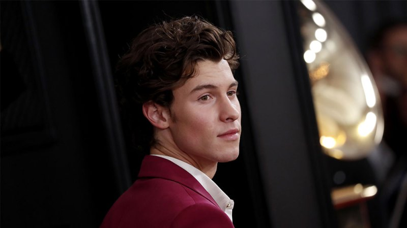 Shawn Mendes' Most Candid Quotes About Being Famous: Talks Pressure of Life in the Spotlight